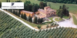 250_ha_of_vineyards_in_the_best_doc_regions_of_tuscany